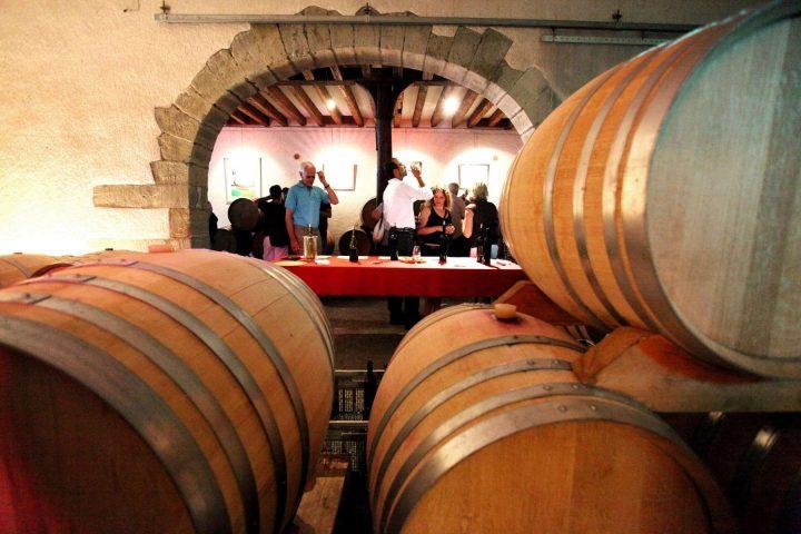 À la découverte des vins du coin