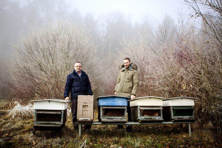 Utiliser le numérique  en faveur des abeilles