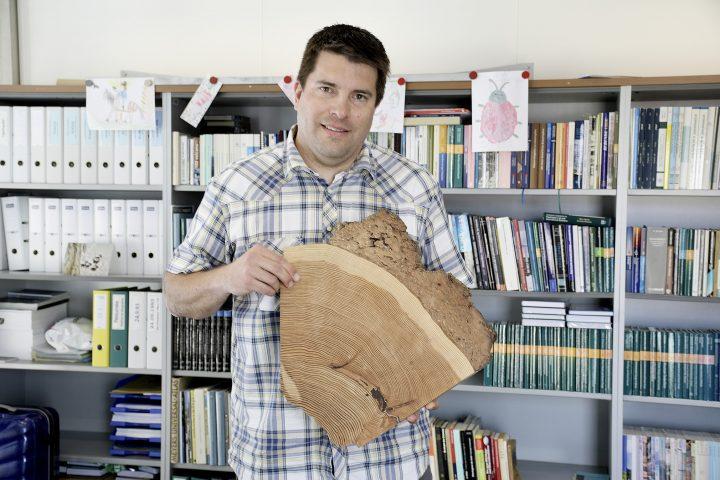 Quand le bois raconte l'histoire