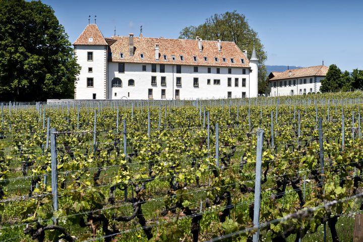20 millions pour le Château d'Allaman