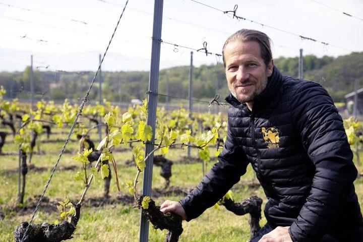 L'esprit de la vigne, du vin et du divin