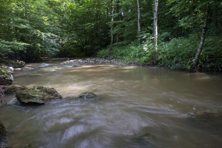 Nos cours d'eau vont de mieux en mieux