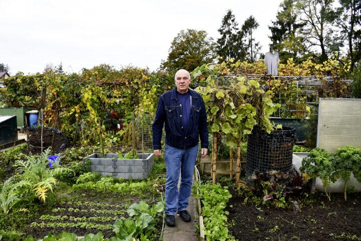 Les jardins familiaux dans l'incertitude
