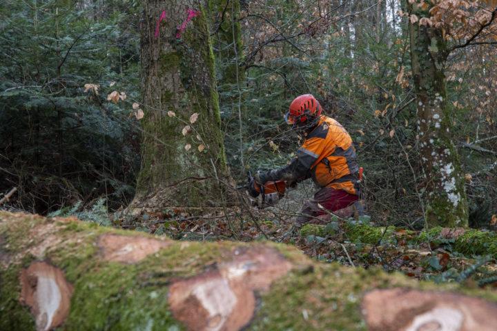 La Suisse ne maîtrise pas les prix du marché du bois. Les valeurs se jouent en Europe, dans les grands pays forestiers. Photo: Bovy