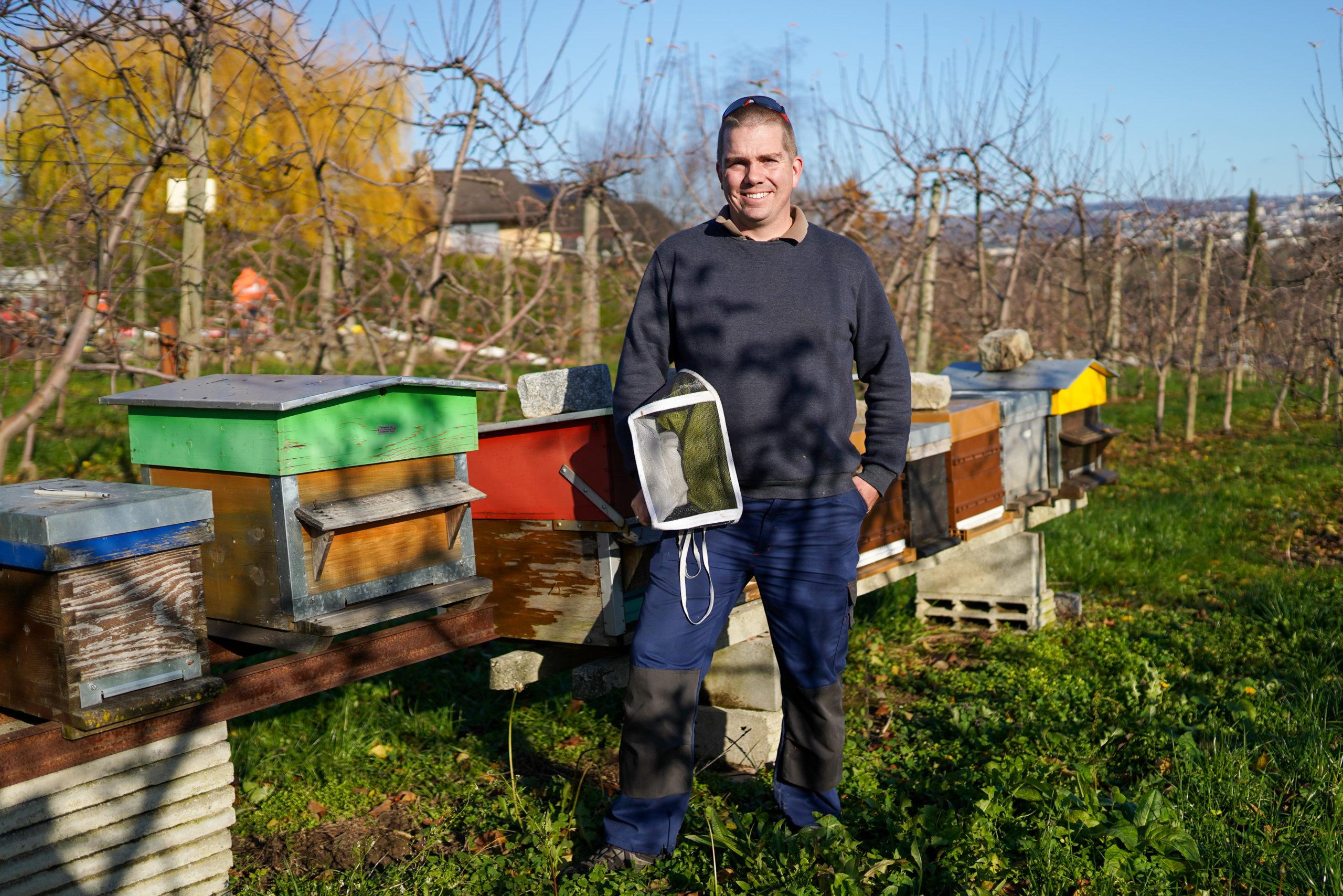 L'année a été catastrophique pour les récolteurs de miel