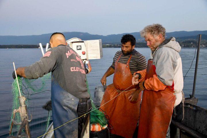5h45 - Après plus d'un kilomètre de filets à truite relevés, pas un seul poisson.
