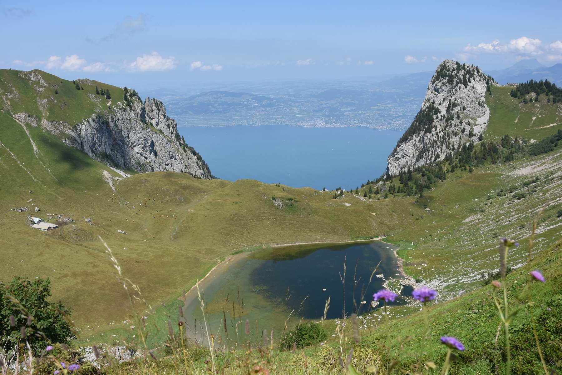Entre Suisse et France, vue sur le Léman
