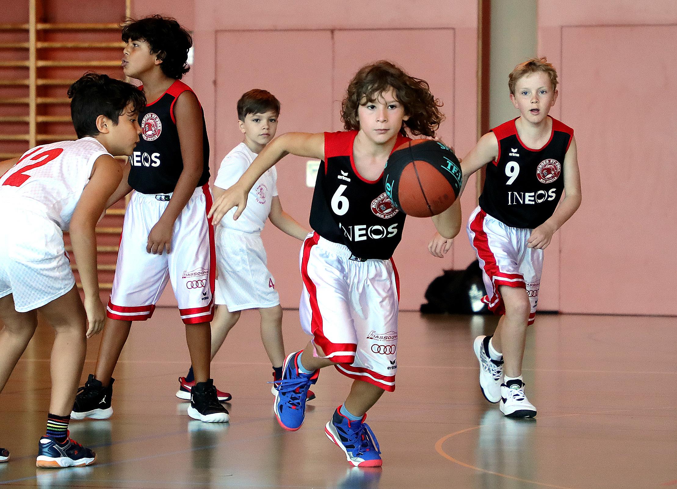 Les basketteurs de retour sur les parquets