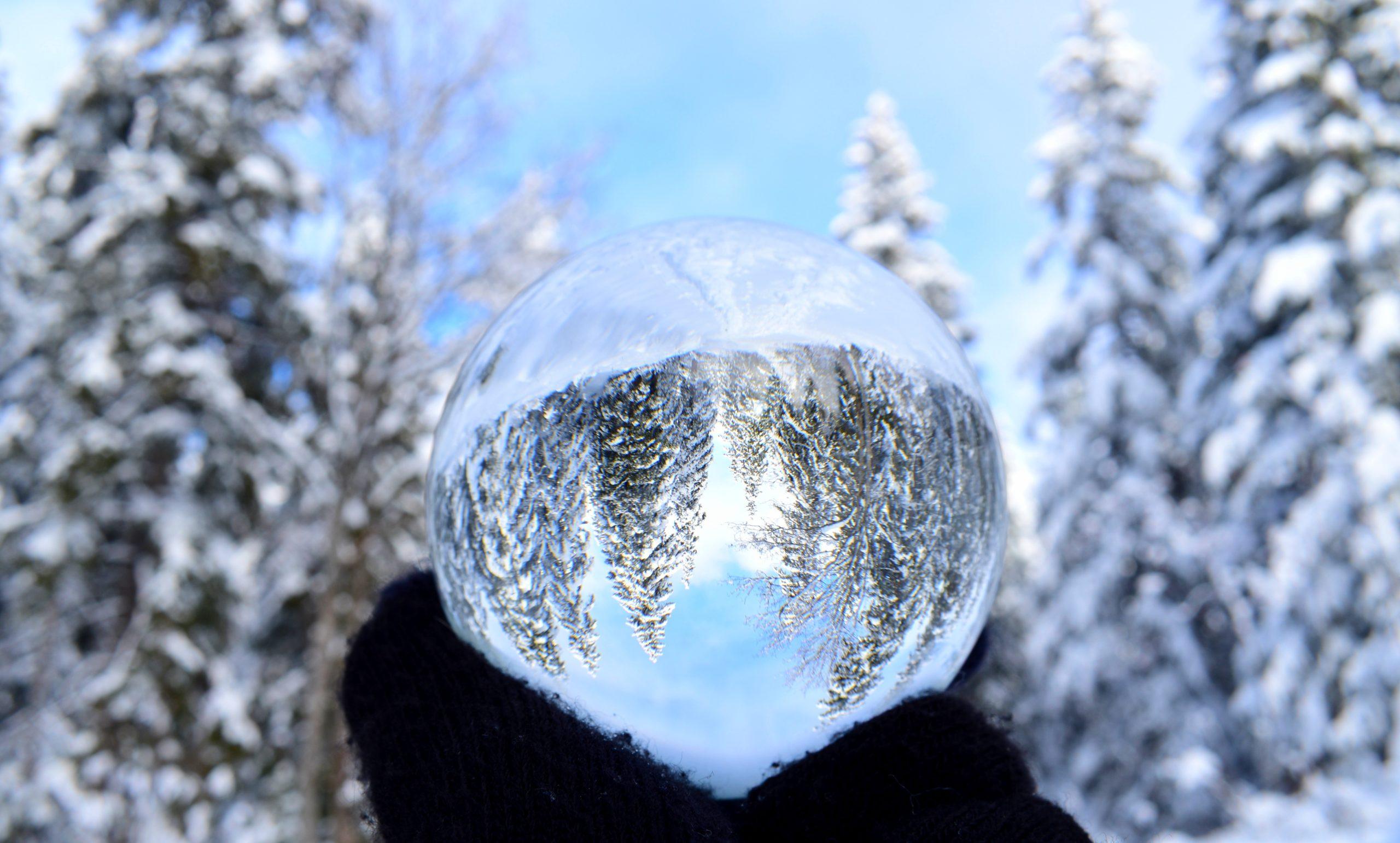 Quelques photos de neige de notre concours