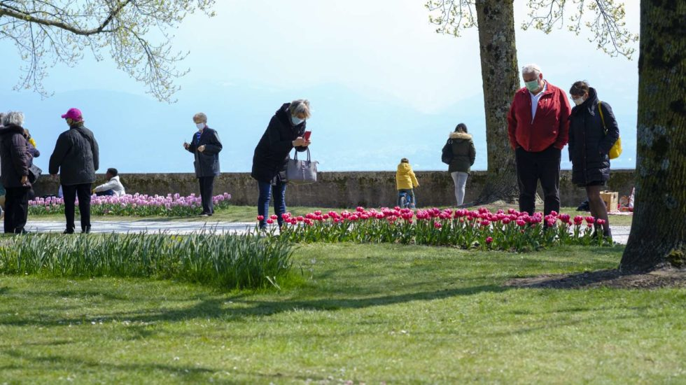 La Fête de la tulipe à Morges savoure un printemps ensoleillé