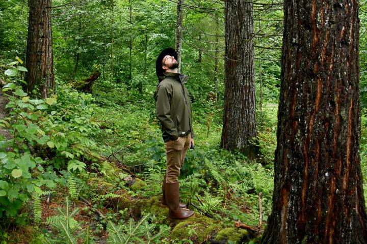 Vacances à la maison: forêt exotique à deux pas