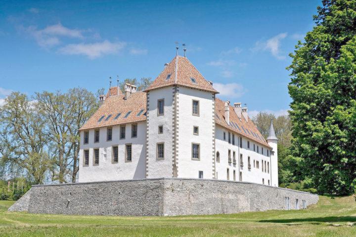 Le château d'Allaman aurait trouvé preneur