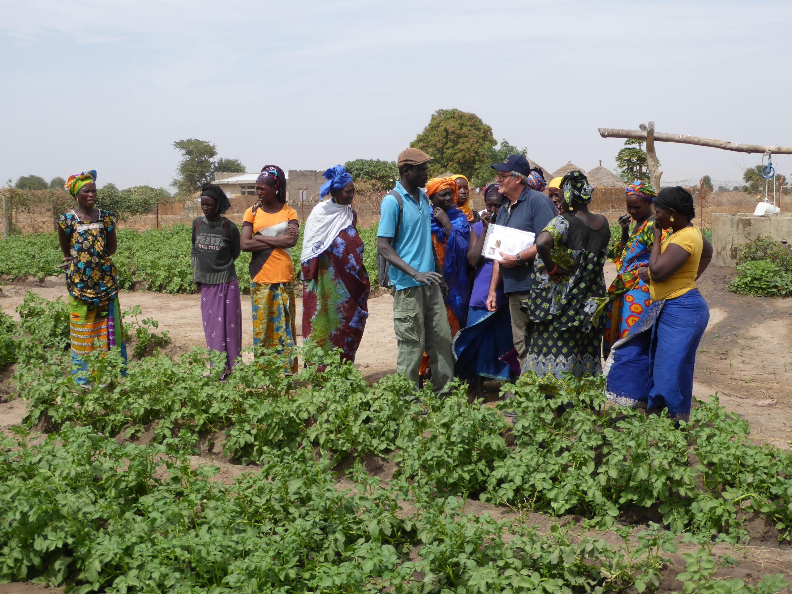 Dix ans d'aide et de coopération en Afrique